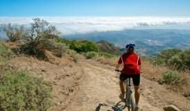 Gran Canaria MTB Tour from bike rental